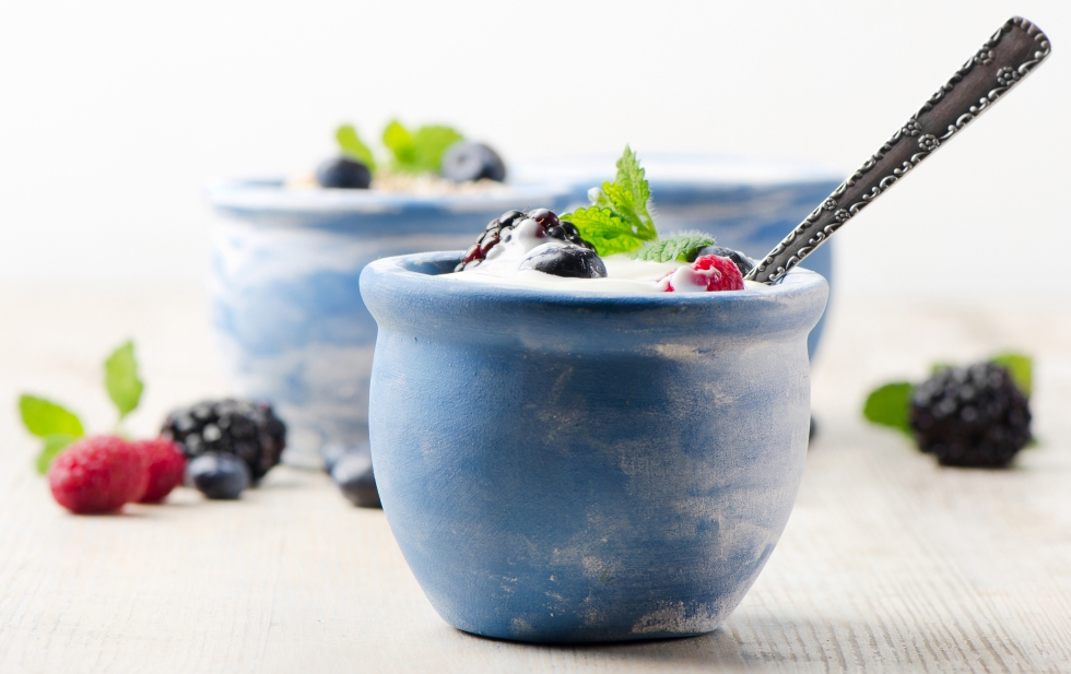 fresh  yogurt and muesli